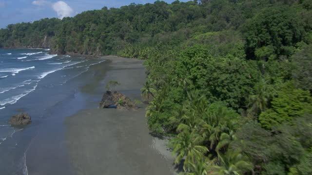 aerial view of waves crashing on coastline with rock formation on llorona beach in corcovado national park, costa rica. - saftig bildbanksvideor och videomaterial från bakom kulisserna