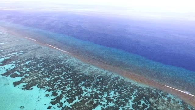 vídeos de stock, filmes e b-roll de vista aérea das ondas batendo praia, maldivas - vazante