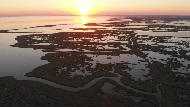 aerial view of wetland and flamingos during sunset - izmir stock videos & royalty-free footage