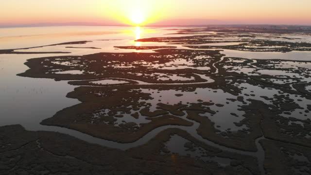 luftaufnahme der feuchtgebiete und flamingos während des sonnenuntergangs - sumpf stock-videos und b-roll-filmmaterial