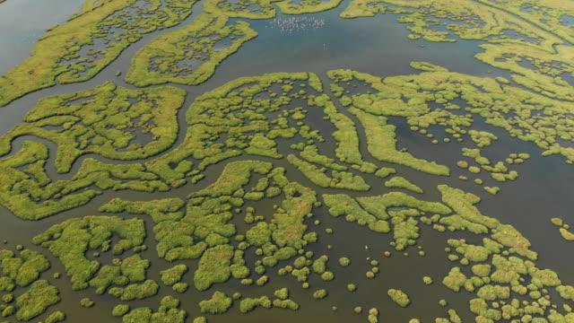 vídeos y material grabado en eventos de stock de vista aérea del humedal - marisma