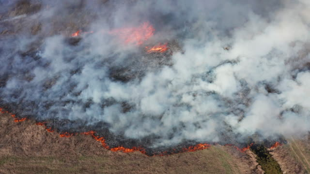 aerial view of wildfire on the field. huge clouds of smoke - burnt stock videos & royalty-free footage