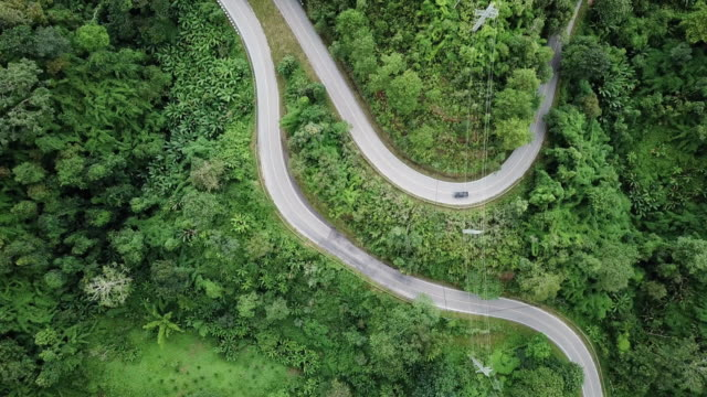 Aerial view of Winding road in the forest and car driving , Safety Driving concept