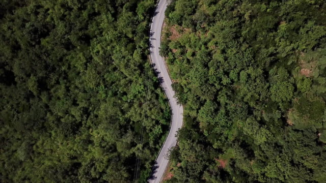 aerial view of winding road in the forest and car driving , safety driving concept - viaggio video stock e b–roll