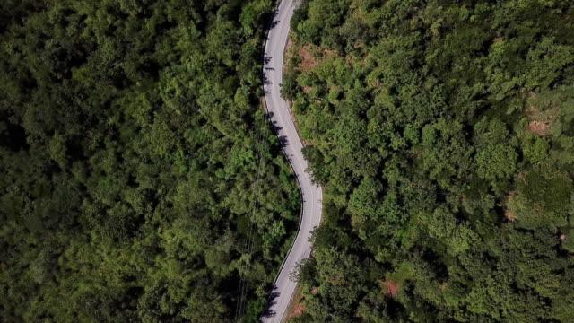 森林や車の運転、安全運転の概念で曲がりくねった道の空撮 - 道路点の映像素材/bロール