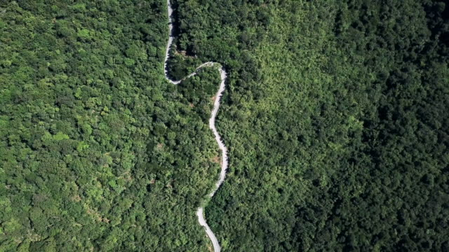 aerial view of winding road in the forest and car driving , safety driving concept - curve stock videos & royalty-free footage
