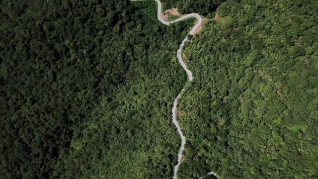 aerial view of winding road in the forest and car driving , safety driving concept - collina video stock e b–roll