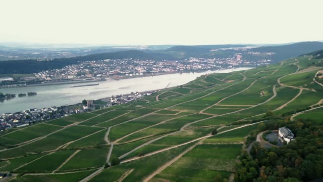 aerial view of winetown rüdesheim am rhein in germany, rheingau - hesse germany stock videos & royalty-free footage