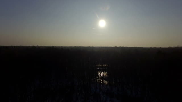 Aerial view of winter defoliated forest. Snow laying on the ground, sun reflecting in the pond