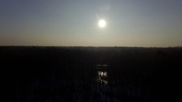 stockvideo's en b-roll-footage met luchtfoto van de winter defoliated bos. sneeuw tot op de grond, de zon weerspiegelt in de vijver - voetafdruk