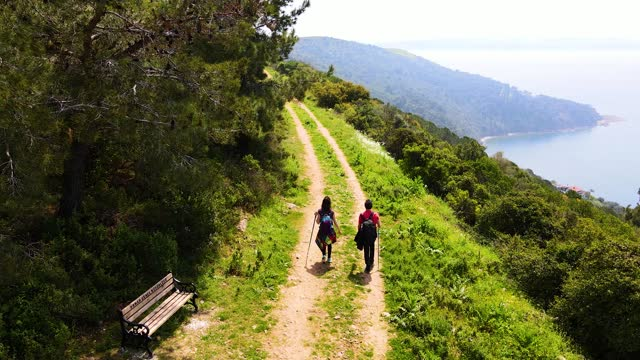 vídeos de stock e filmes b-roll de aerial view of woman and man walking up on mountain slope at tropical rainforest, hiking on the forest road by the seaside, men and women forest trekking, top view aerial drone flight over people walking along a forest path - religião