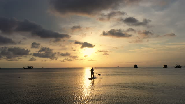 aerial view of woman paddleboarding on sea in sunset time - oar stock videos & royalty-free footage