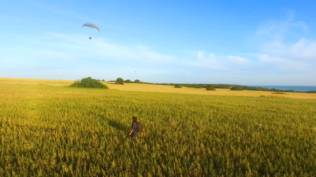stockvideo's en b-roll-footage met aerial view of woman runninf free in a wheat field - horizon over water