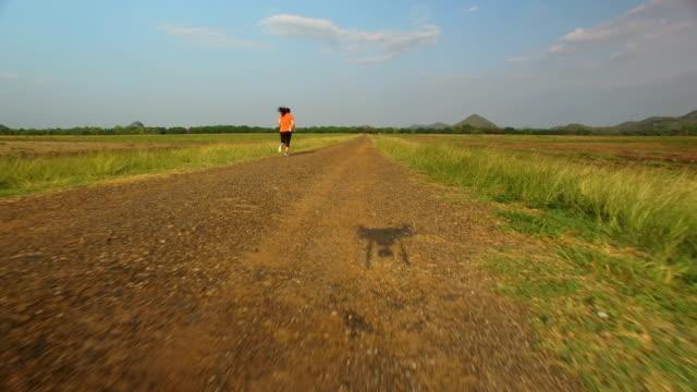 vídeos y material grabado en eventos de stock de vista aérea de la mujer que corre en un camino rural durante el atardecer en las montañas - corredora de footing