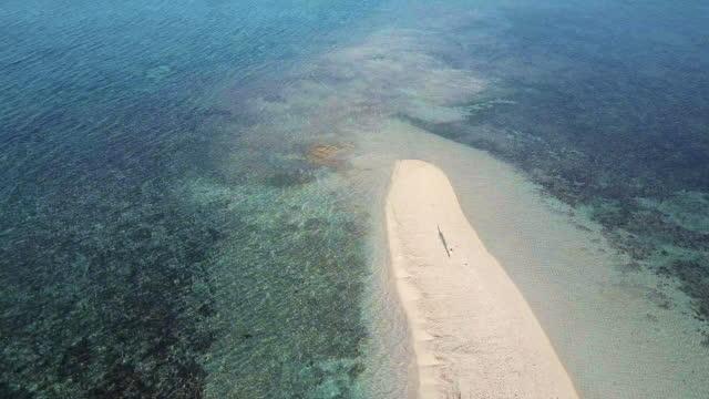 vidéos et rushes de vue aérienne (drone) de femme qui marche au bord de l'île tropicale - philippines