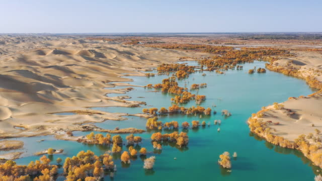 aerial view of xinjiang - ecosystem stock videos & royalty-free footage