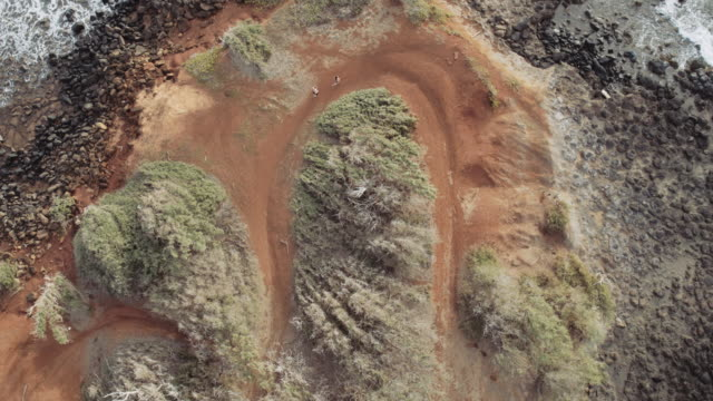 aerial view of young couple trail running - kauai stock videos & royalty-free footage