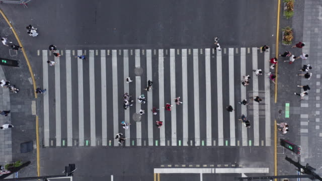 aerial view of zebra crossing at the bund of shanhghai - crossing stock videos & royalty-free footage