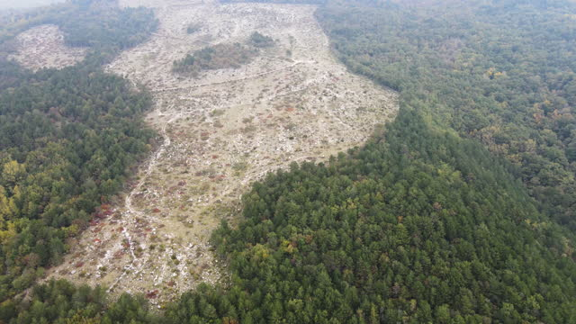 aerial view on cut down forest on a slope of a hill - zoom out stock videos & royalty-free footage