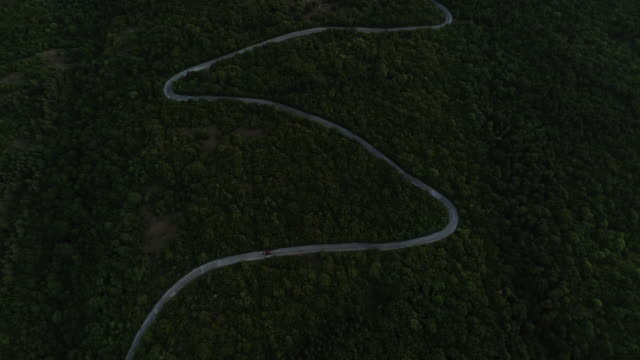 aerial view on road in the forest in the dark - mountain road stock videos & royalty-free footage