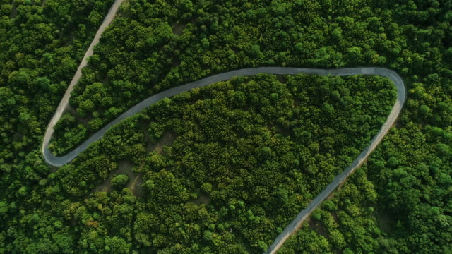 aerial view on road in the forest - mountain road stock videos & royalty-free footage