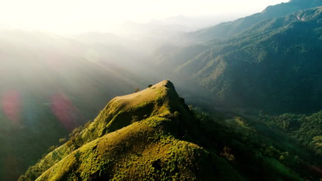 stockvideo's en b-roll-footage met luchtfoto op thee plantage in sri lanka - dageraad