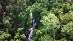 Aerial view on the top of Forest and waterfall , creek in the forest