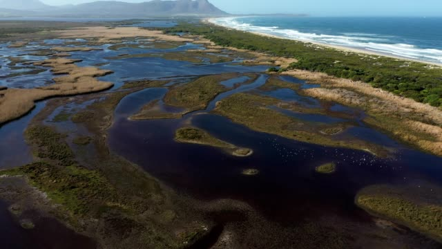 aerial view over a beautiful estuary near the coast - western cape province stock videos & royalty-free footage