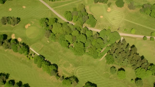 aerial view over a golf course in sunshine. 4k - golf grass stock videos & royalty-free footage