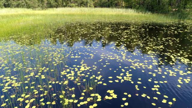 Flygfoto över en sjö i den svenska skärgården