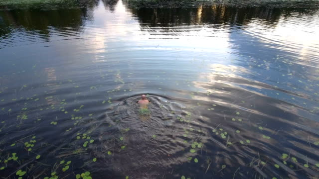 aerial view over a man swimming in a lake - recreational pursuit stock videos & royalty-free footage