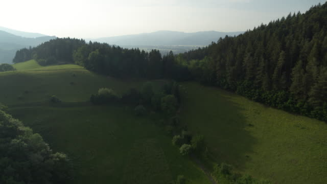 aerial view over black forest, germany - baden württemberg stock videos & royalty-free footage
