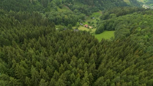 ドイツの黒い森を空撮 - シュバルツバルト点の映像素材/bロール