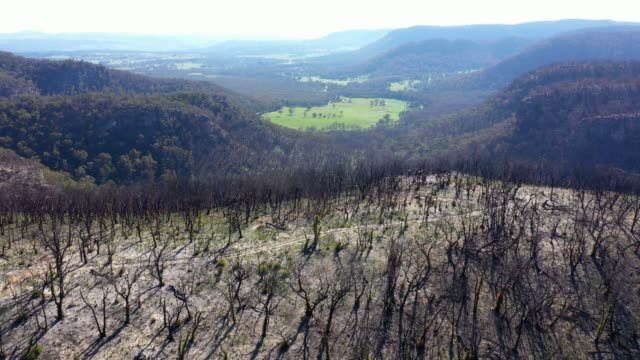 aerial view over burnt mountain with green valley after forest fire - ridge stock videos & royalty-free footage