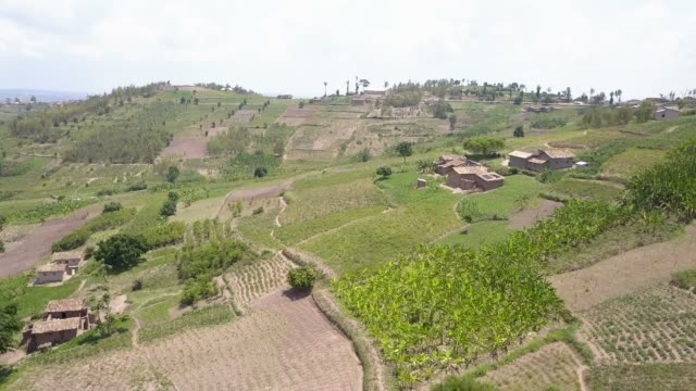 Aerial view over fertile farms in rural Africa
