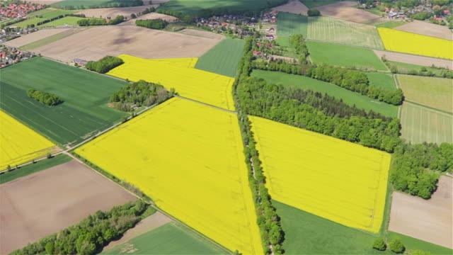 vídeos y material grabado en eventos de stock de vista aérea sobre pasto verde mosaico farmland campos - canola