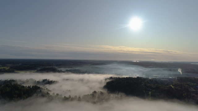 aerial view over foggy rural landscape - woodland stock videos & royalty-free footage