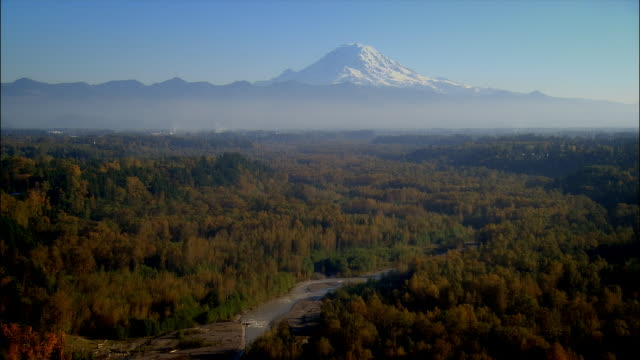 stockvideo's en b-roll-footage met aerial view over forest with mount rainier in the background / auburn, washington - staat washington