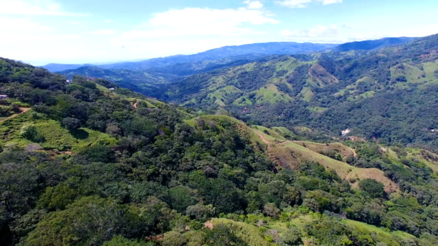 aerial view over forested hillside at rainforest - コスタリカ点の映像素材/bロール