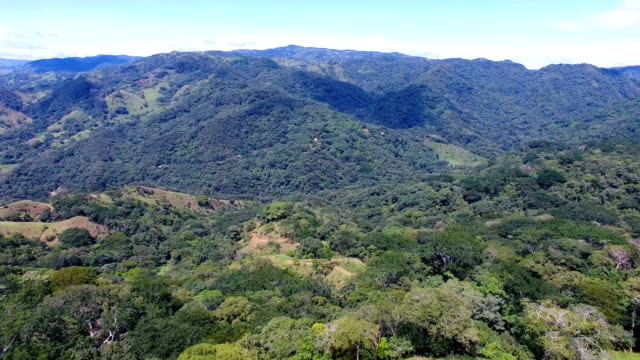 aerial view over forested hillside - puntarenas stock-videos und b-roll-filmmaterial