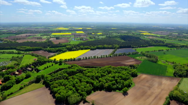 aerial view over german green pasture patchwork farmland - patchwork landscape stock videos and b-roll footage