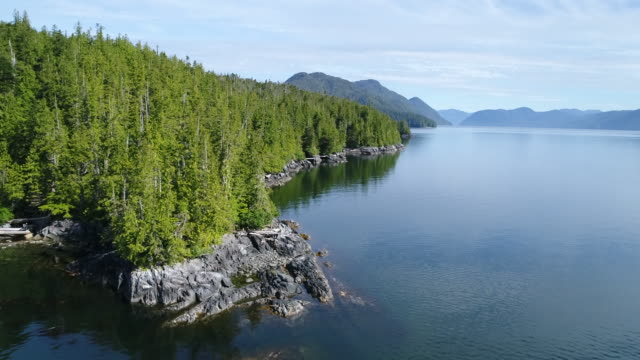 Aerial View over Great Bear Rainforest coastline