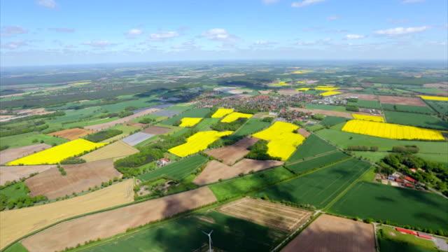 vídeos y material grabado en eventos de stock de vista aérea sobre las tierras de labrantío del patchwork de pastos verdes en baja sajonia, alemania - canola