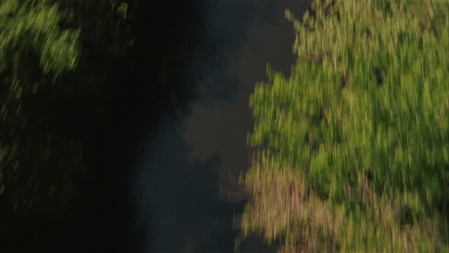 aerial view over river surrounded by trees and marshland / tilt up to wide shot of marsh / louisiana - bayou lafourche stock-videos und b-roll-filmmaterial