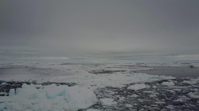 vidéos et rushes de aerial view over sea ice in lancaster sound, baffin island, canada. - ligne d'horizon au dessus de l'eau