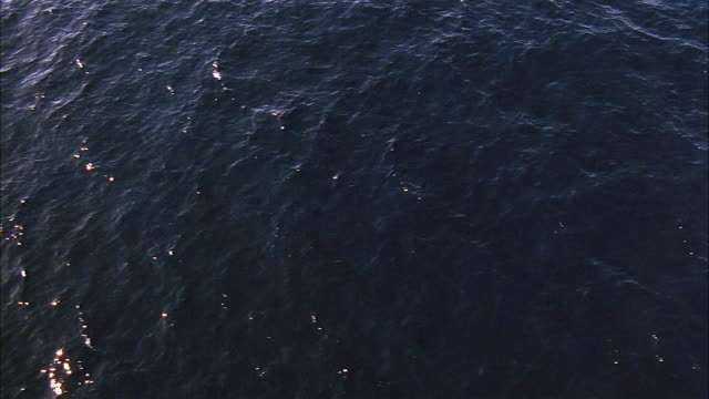 aerial view over the ocean lightly rippling with waves - 1995 stock videos & royalty-free footage