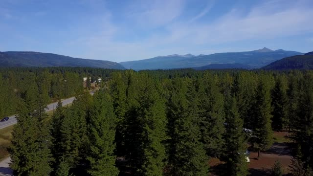 aerial view over the yellowhead highway near little fort and clearwater, british columbia, canada, north america - tree fort stock videos & royalty-free footage