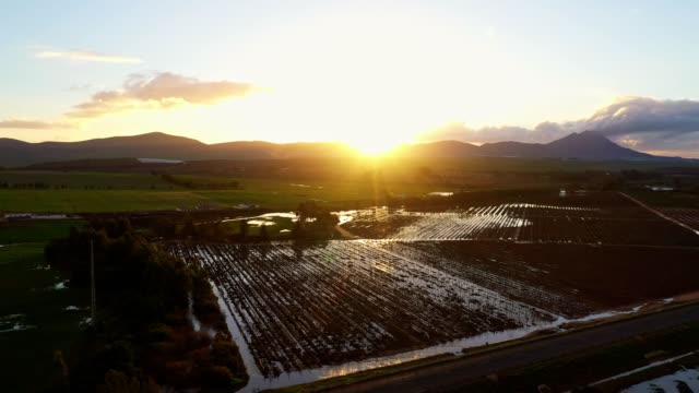aerial view over water logged vineyards after heavy rains - western cape province stock videos & royalty-free footage