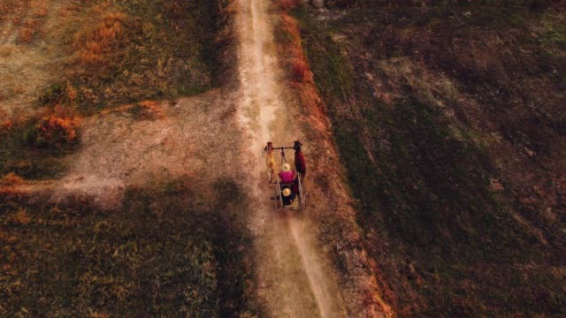 aerial view ox cart at sunset - cambodia stock videos and b-roll footage