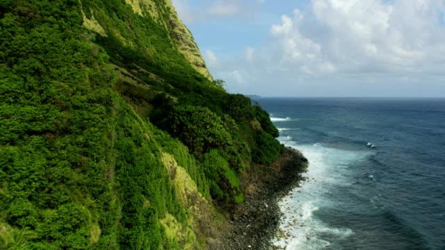 Aerial view Pacific ocean coastline vertical waterfall Hawaii
